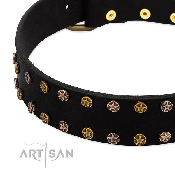 Amazing embellishments on full grain natural leather collar for your dog