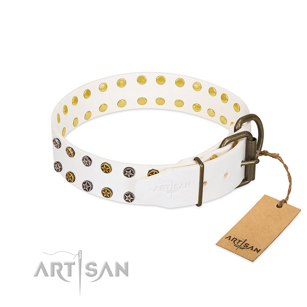 Leather collar with significant studs for your doggie