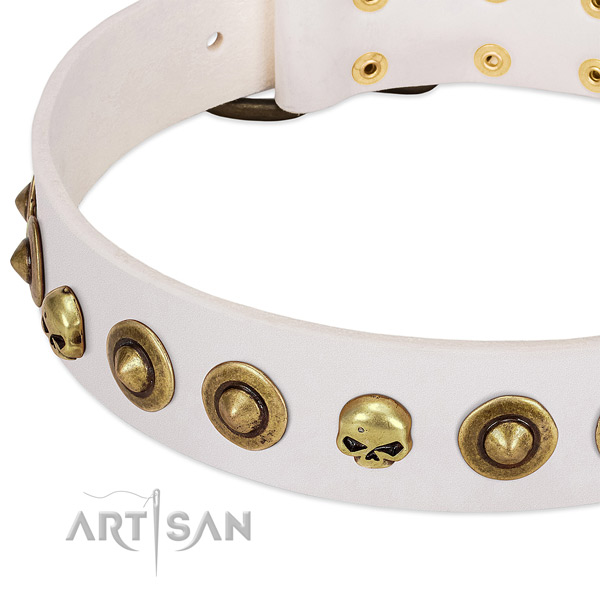 Trendy embellishments on full grain natural leather collar for your four-legged friend