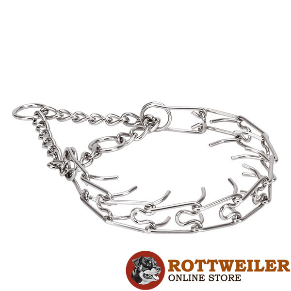 Rust resistant stainless steel pinch collar for poorly behaved canines