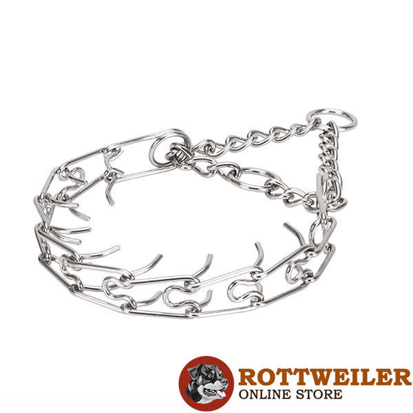 Stainless steel prong collar with reliable O-rings for attaching a leash