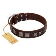"""Needle Stories"" Modern FDT Artisan Brown Leather Rottweiler Collar with Square Engraved Plates and Four-Point Stars"