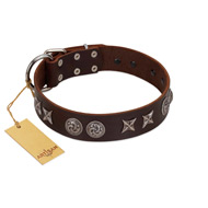 """Silver Sunset"" Designer Handmade FDT Artisan Brown Leather Rottweiler Collar"