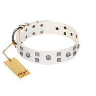 """Rock the Sky"" Durable FDT Artisan White Leather Rottweiler Collar with Chrome-plated Decorations"
