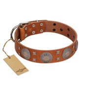 """Sun Rise Noon"" FDT Artisan Tan Leather Rottweiler Collar with Unique Design"
