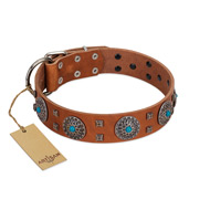 """Blue Sands"" FDT Artisan Tan Leather Rottweiler Collar with Silver-like Studs and Round Conchos with Stones"