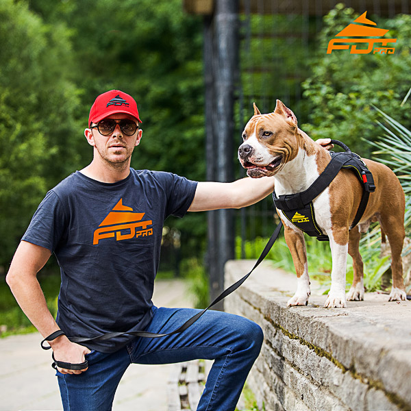 Men T-shirt of Top Notch Cotton with Orange Logo for Dog Training