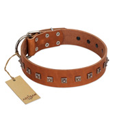 """Guard of Honour "" Designer FDT Artisan Tan Leather Rottweiler Collar with Small Dotted Pyramids"