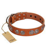 """Woofy Majesty"" FDT Artisan Tan Leather Rottweiler Collar with Round Silver-like Plates"