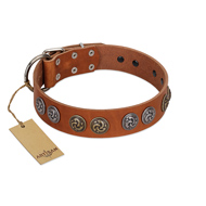 """Luxurious Life"" Premium Quality FDT Artisan Tan Leather Rottweiler Collar with Round Adornments"