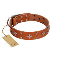 """Tawny Beauty"" FDT Artisan Tan Leather Rottweiler Collar Adorned with Stars and Tiny Squares"