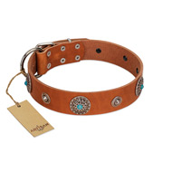 """Marine Antiques"" Handmade FDT Artisan Tan Leather Rottweiler Collar with Blue Stones"