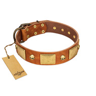 """Mutt The Daredevil"" FDT Artisan Tan Leather Rottweiler Collar with Old Bronze-like Skulls and Plates"