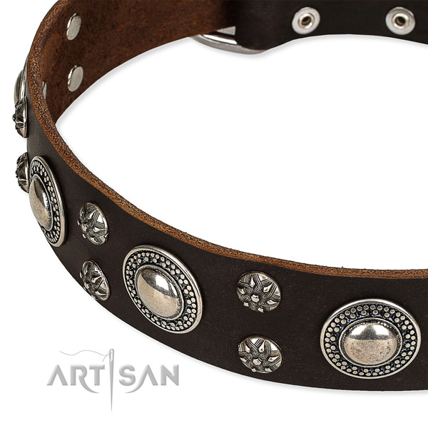Adjustable leather dog collar with almost unbreakable brass plated buckle and D-ring