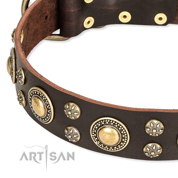 Easy to use leather dog collar with extra sturdy rust-proof buckle