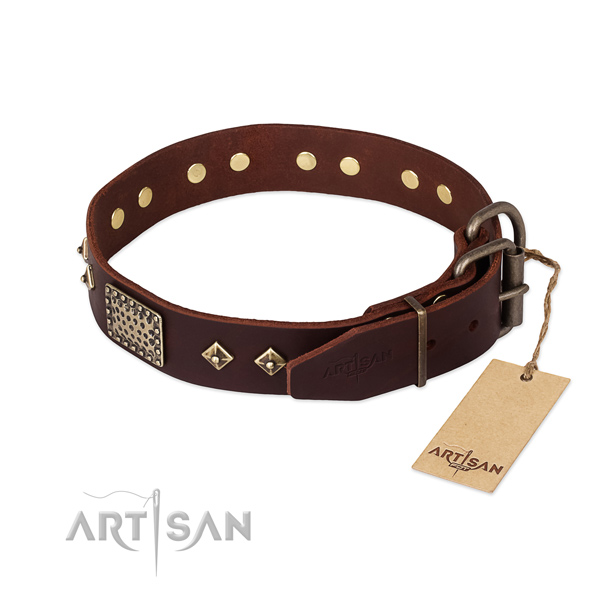 Handy use full grain natural leather collar with embellishments for your canine