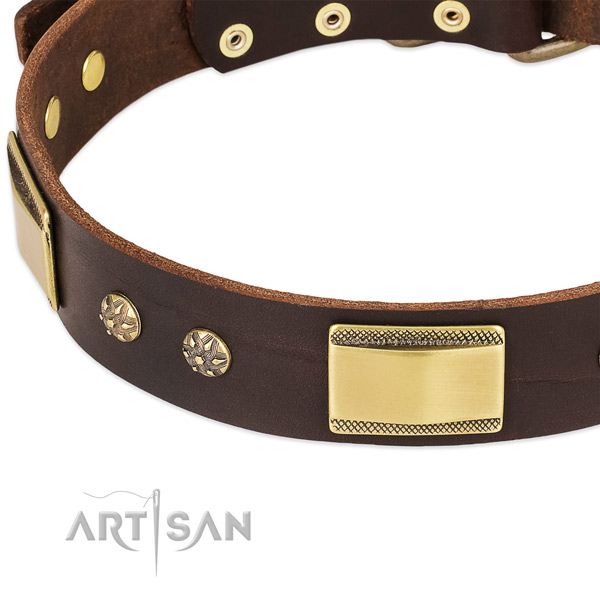 Everyday use natural genuine leather collar with rust-proof buckle and D-ring