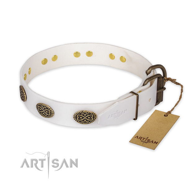 Walking full grain genuine leather collar with adornments for your pet