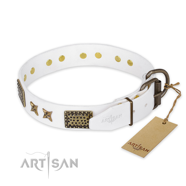 Walking genuine leather collar with decorations for your canine