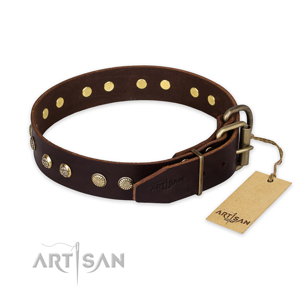 Stylish walking leather collar with studs for your dog