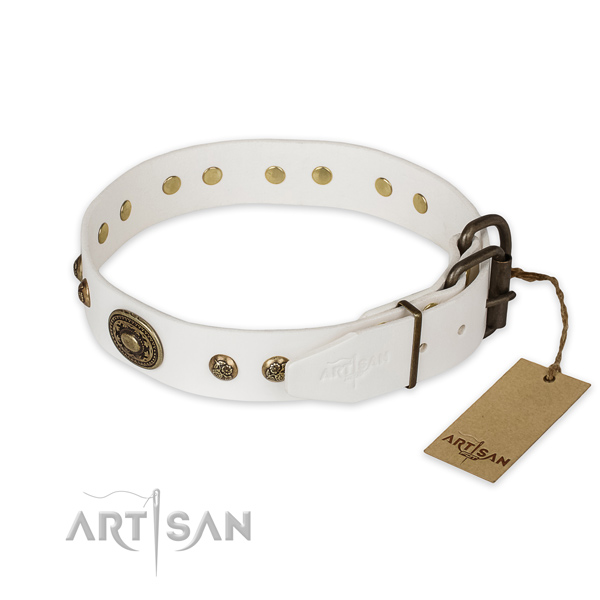 Stylish walking genuine leather collar with embellishments for your four-legged friend
