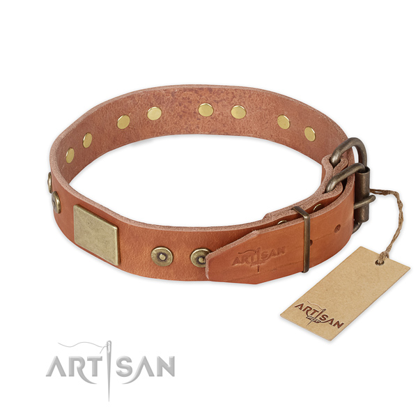 Everyday use full grain natural leather collar with studs for your doggie