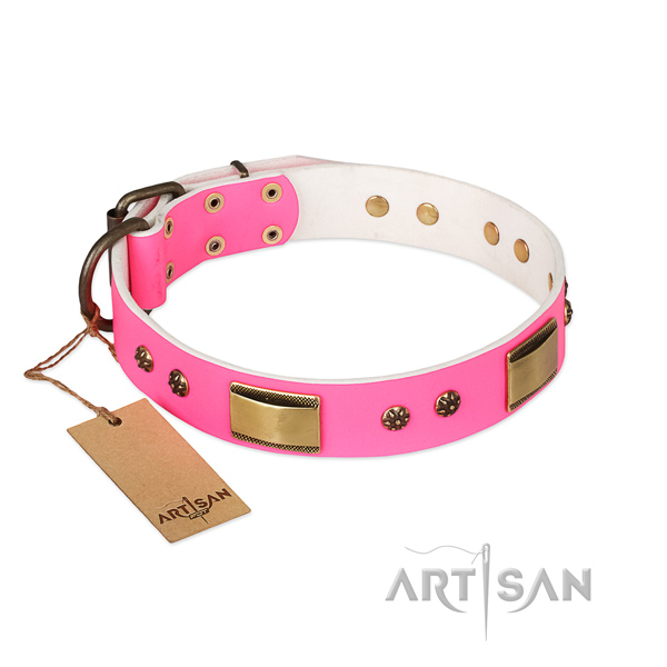 Incredible design embellishments on full grain natural leather dog collar