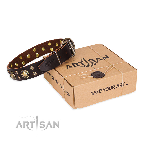 Day-to-day leather dog collar with cute embellishments