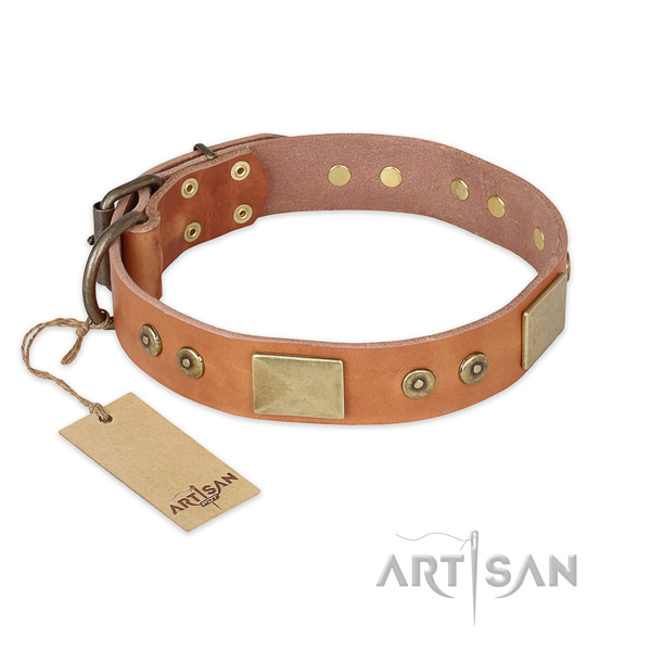 Extraordinary design adornments on leather dog collar