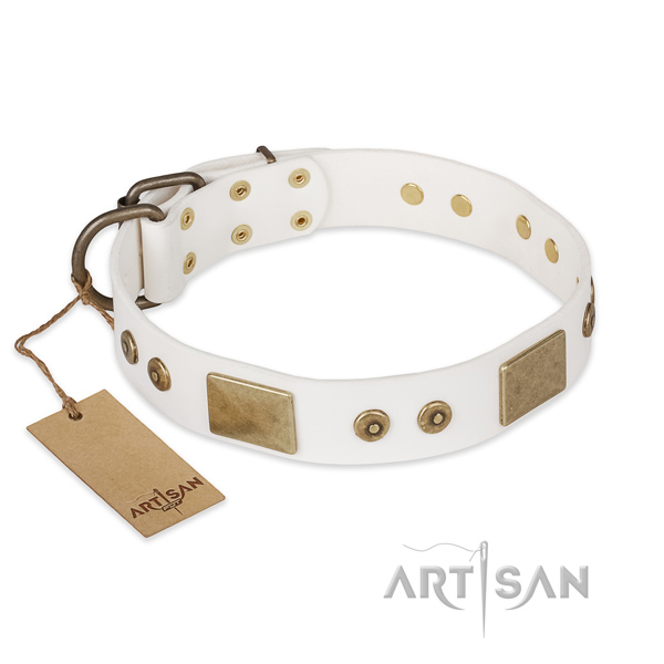 Awesome design adornments on genuine leather dog collar