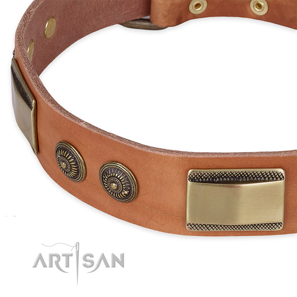 Everyday use natural genuine leather collar with strong buckle and D-ring