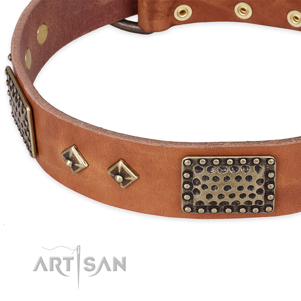 Daily use leather collar with corrosion proof buckle and D-ring