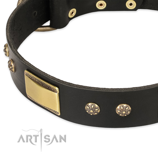 Everyday use full grain genuine leather collar with strong buckle and D-ring