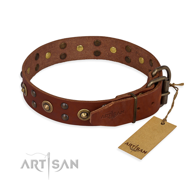 Walking full grain natural leather collar with adornments for your dog