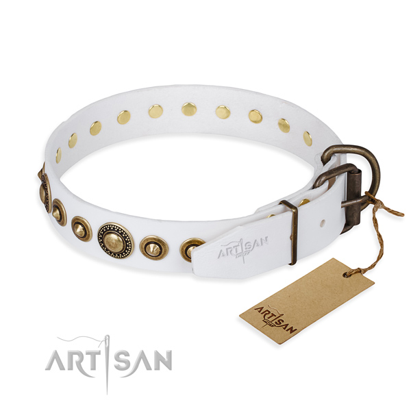 Practical leather collar for your elegant four-legged friend