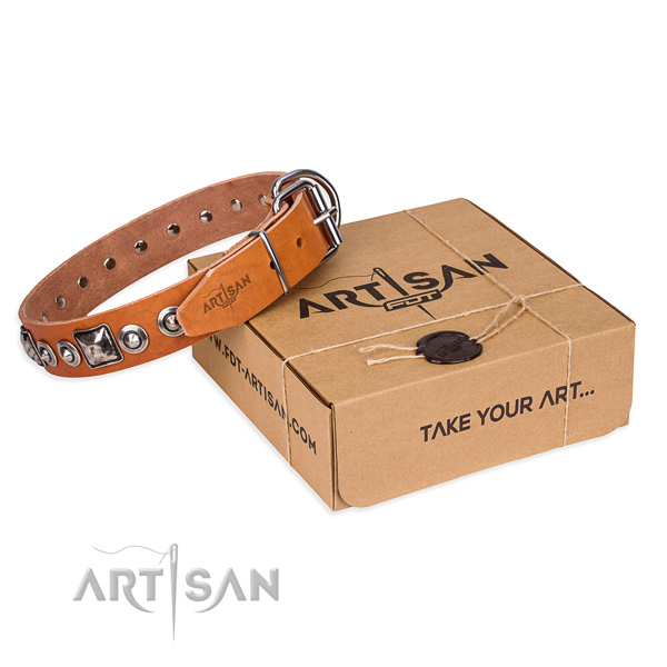Trendy full grain natural leather dog collar for walking