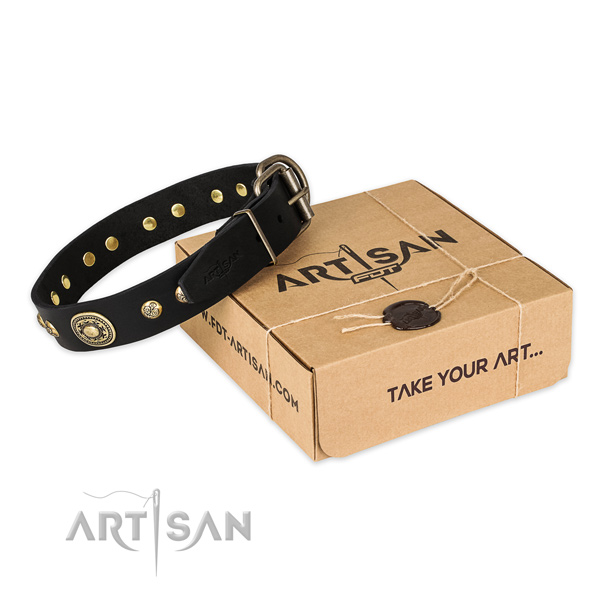 Impressive natural genuine leather dog collar for stylish walks