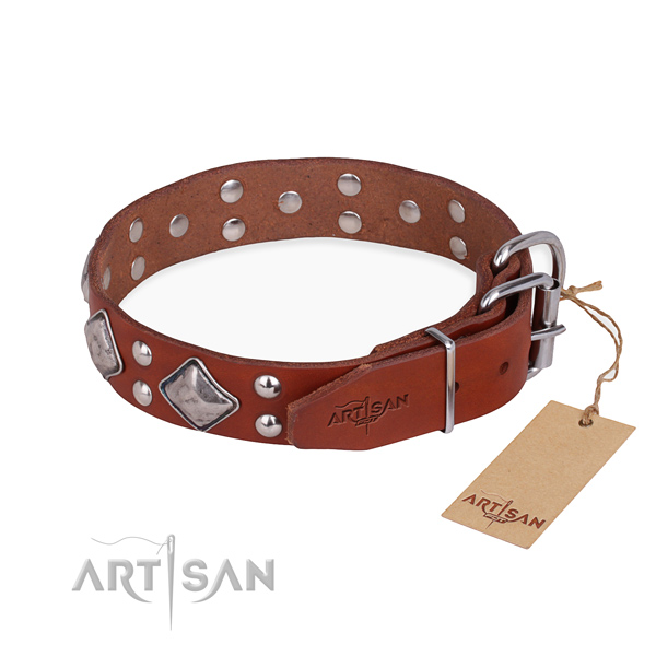 Fashionable leather collar for your handsome pet