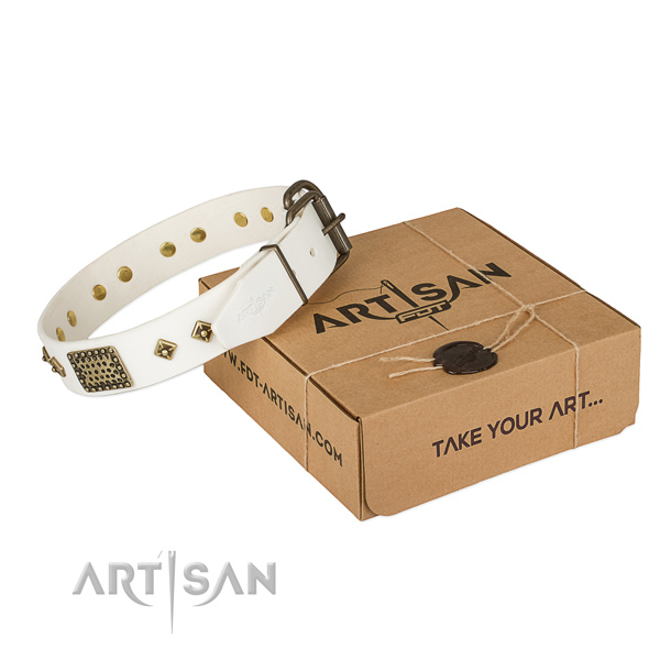 High quality genuine leather dog collar for daily use