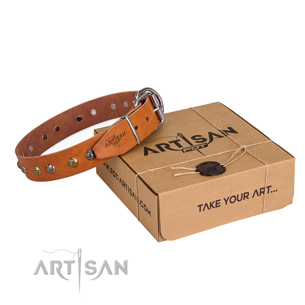 Top quality leather dog collar for stylish walks