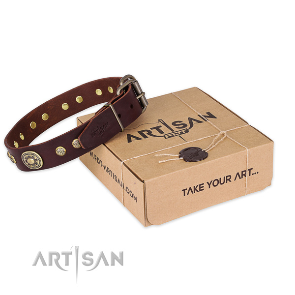 Incredible genuine leather dog collar for walking