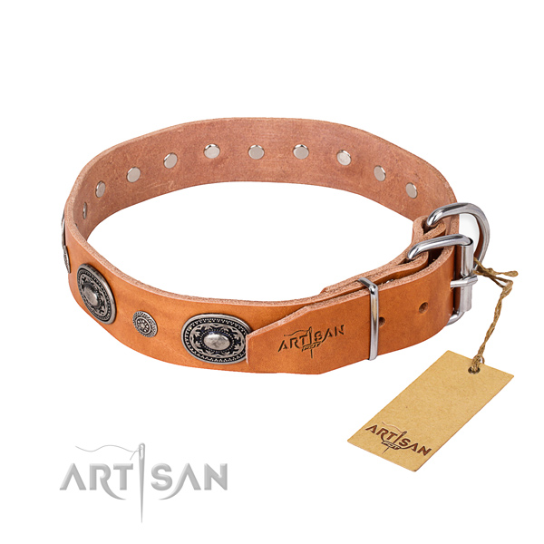 Stylish leather collar for your gorgeous dog