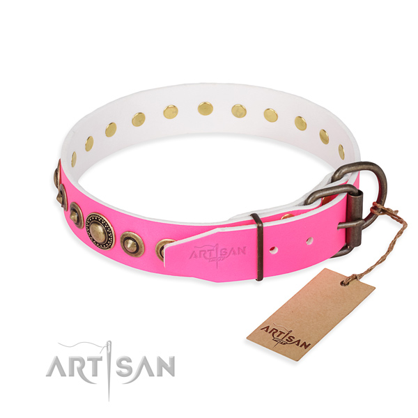 Versatile leather collar for your stunning four-legged friend