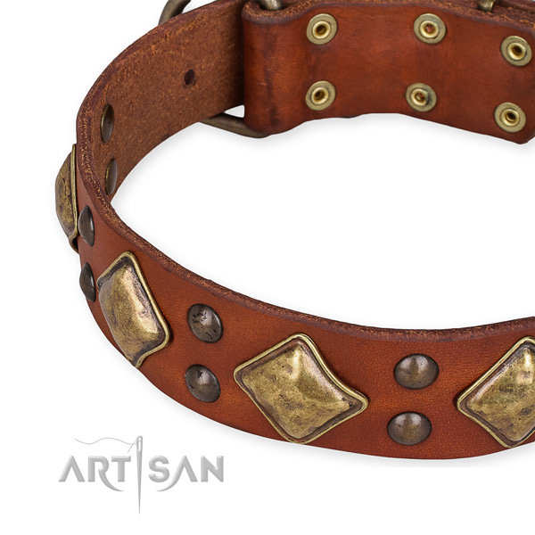 Easy to put on/off leather dog collar with almost unbreakable brass plated hardware