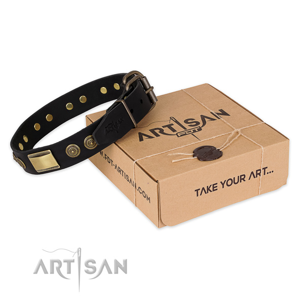 Perfect fit leather dog collar for walking in style