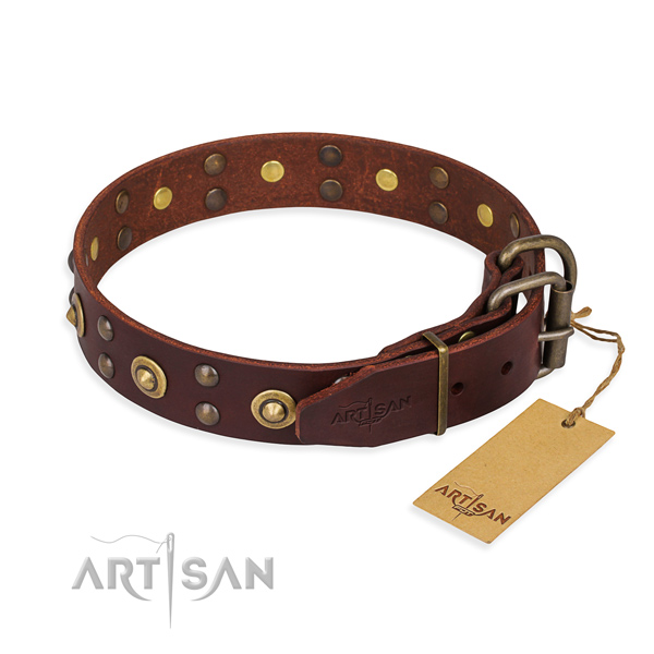 Everyday use leather collar with decorations for your doggie