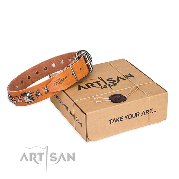 Designer full grain genuine leather dog collar for stylish walking