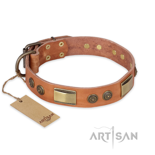Trendy design adornments on natural genuine leather dog collar