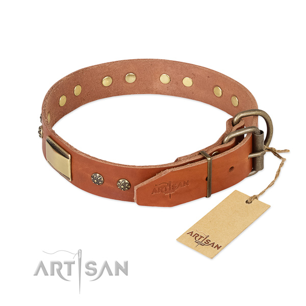 Everyday walking full grain natural leather collar with studs for your canine