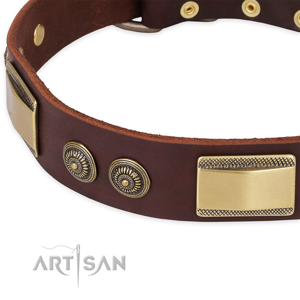 Everyday walking genuine leather collar with strong buckle and D-ring